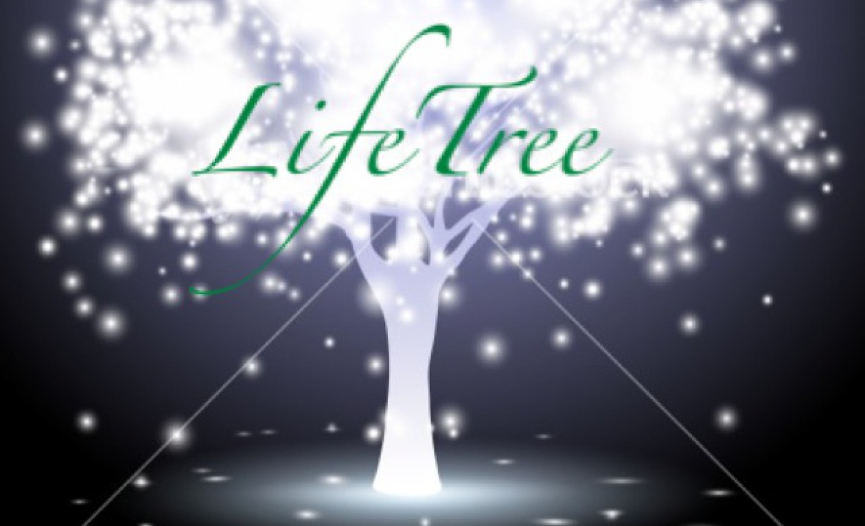 LiifeTree: equipping in identity, spirituals, mental health, healing, wonder…